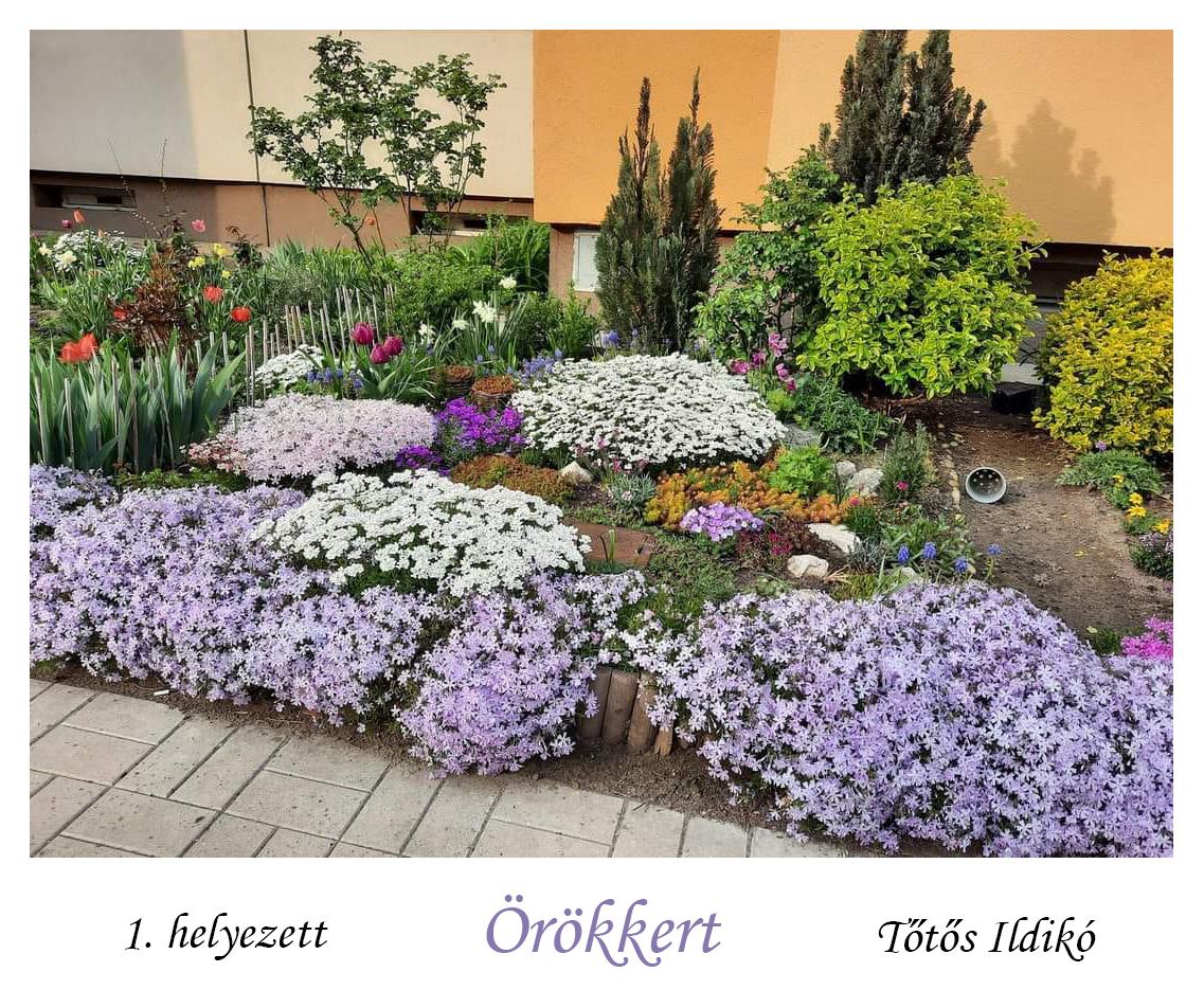 A kerület legszebb kertje